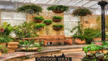 Ross park condos london vip access sam elgohary 416 for Indoor gardening ontario