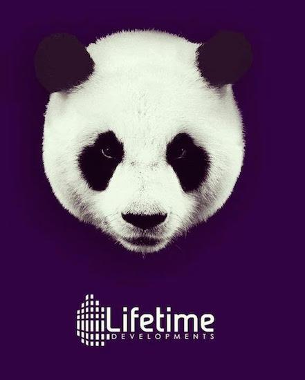 Panda Condos Developer