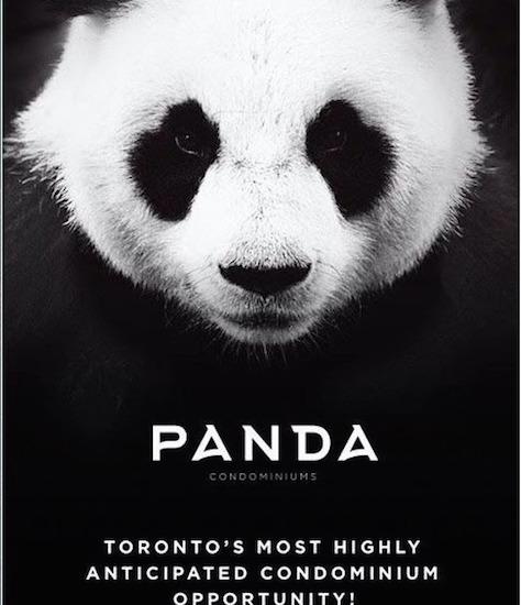 Panda Condos www.CondosDeal.com most highly