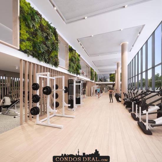 QA Condos Gym