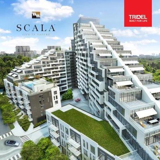 Scala Condo By Tridel