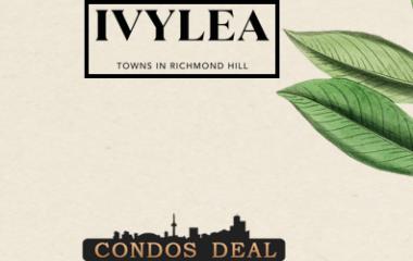 Ivylea Towns